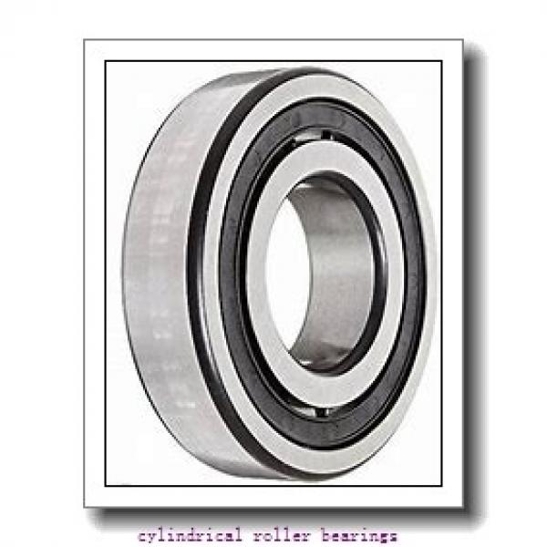 2.756 Inch | 70 Millimeter x 4.921 Inch | 125 Millimeter x 0.945 Inch | 24 Millimeter  CONSOLIDATED BEARING NJ-214 M  Cylindrical Roller Bearings #1 image